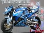 tiger-transformer-1-copy